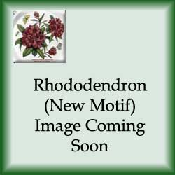 Rhododendron - Dinner Plate